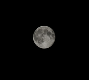 Full Cold Moon @ Earth