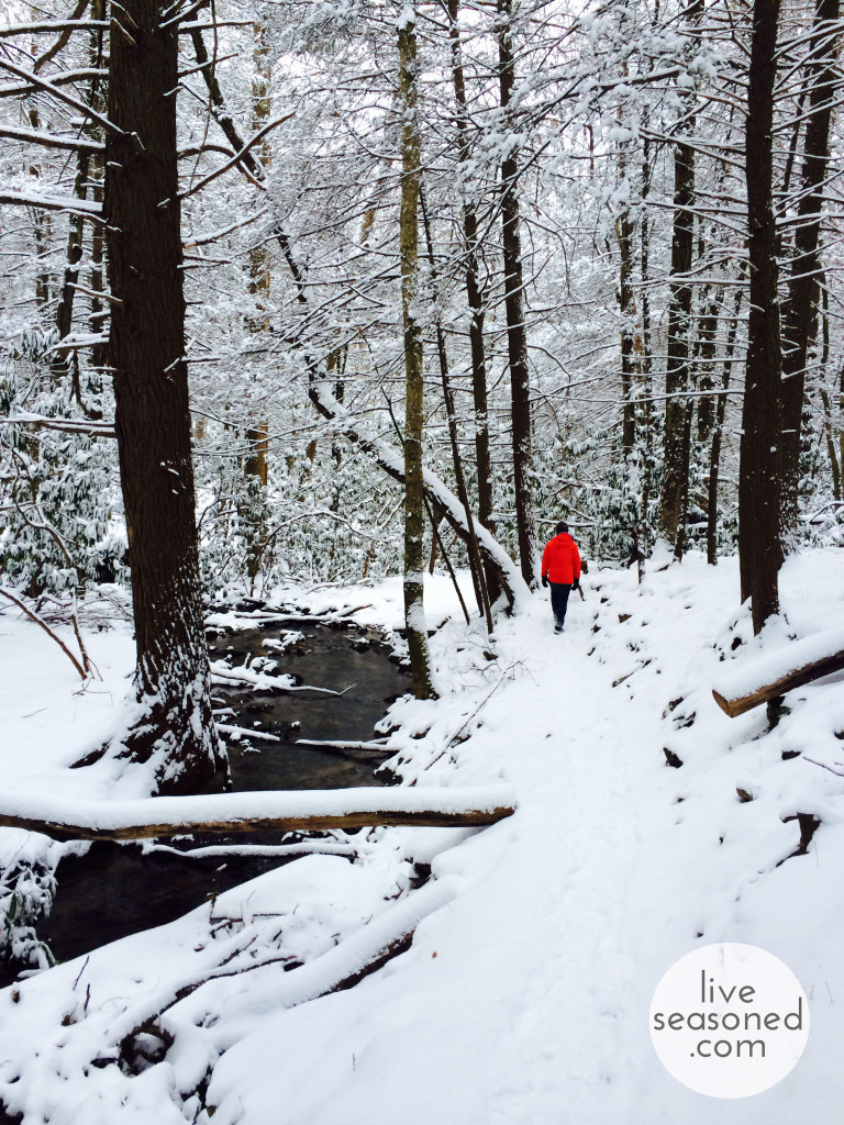 liveseasoned_winterhike_calder2