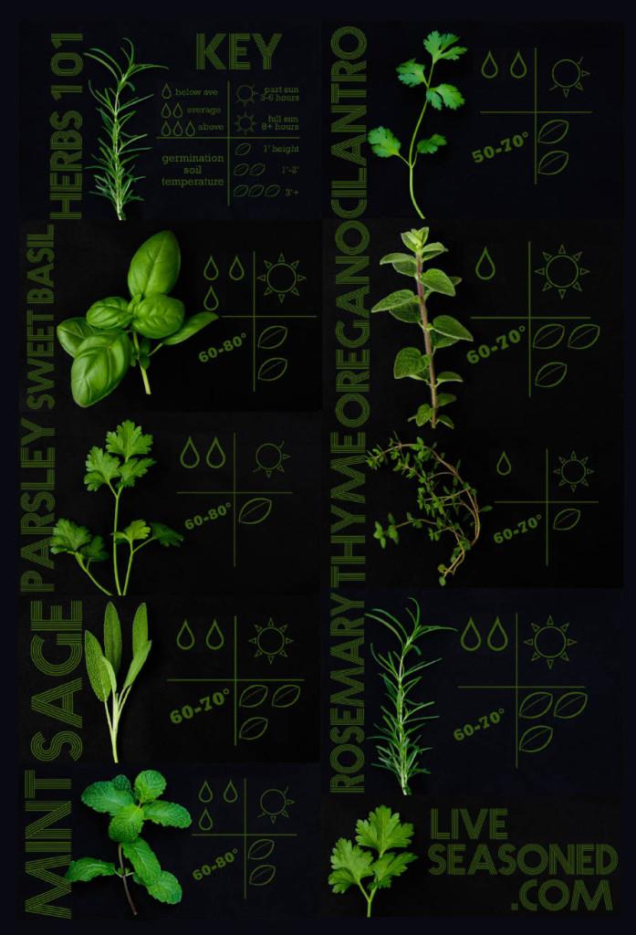 liveseasoned_spring2014_herbs101