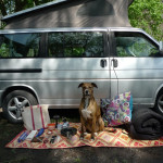 Pack Your Bags : Van Camping