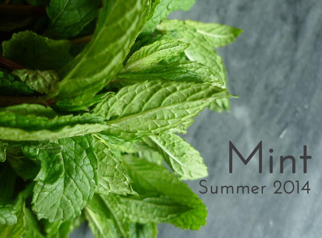Summer 2014 : Mint