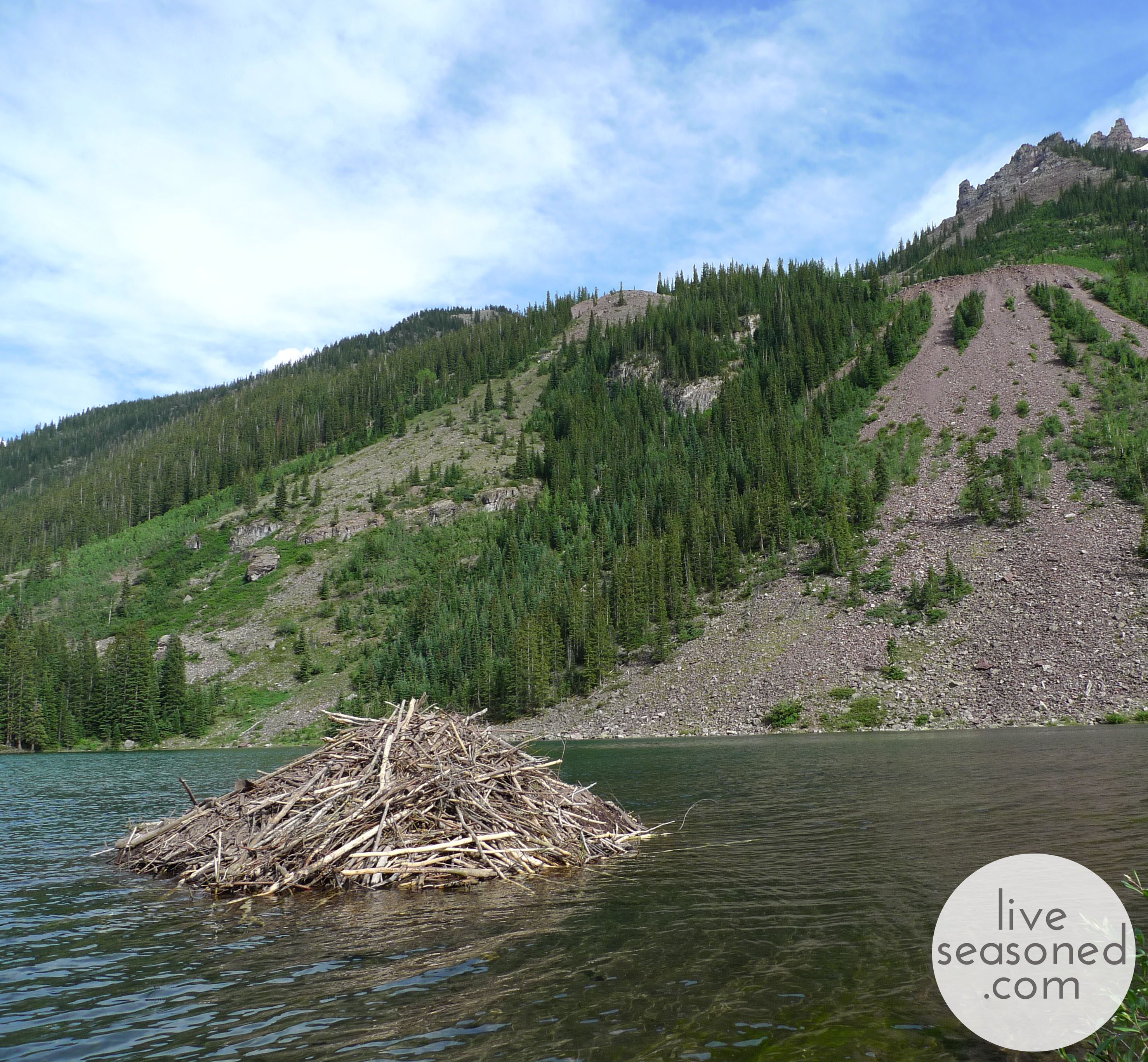 liveseasoned_summer2014_maroonbells2_wm
