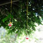liveseasoned_summer14_hangingvases-2-3