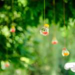 liveseasoned_summer14_hangingvases-3-3