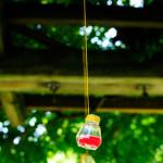 liveseasoned_summer14_hangingvases-8-2