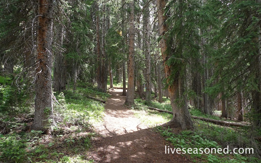 liveseasoned_summer2014_aspen16