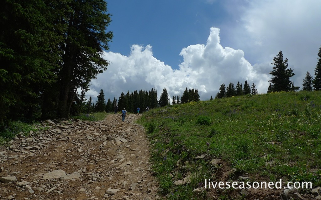 liveseasoned_summer2014_aspen20