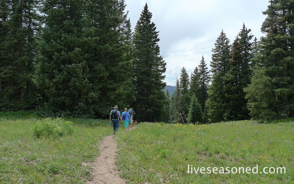 liveseasoned_summer2014_aspen21