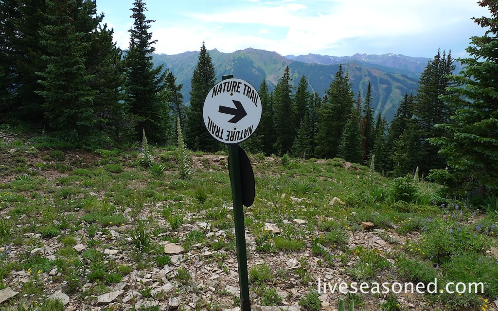 liveseasoned_summer2014_aspen22