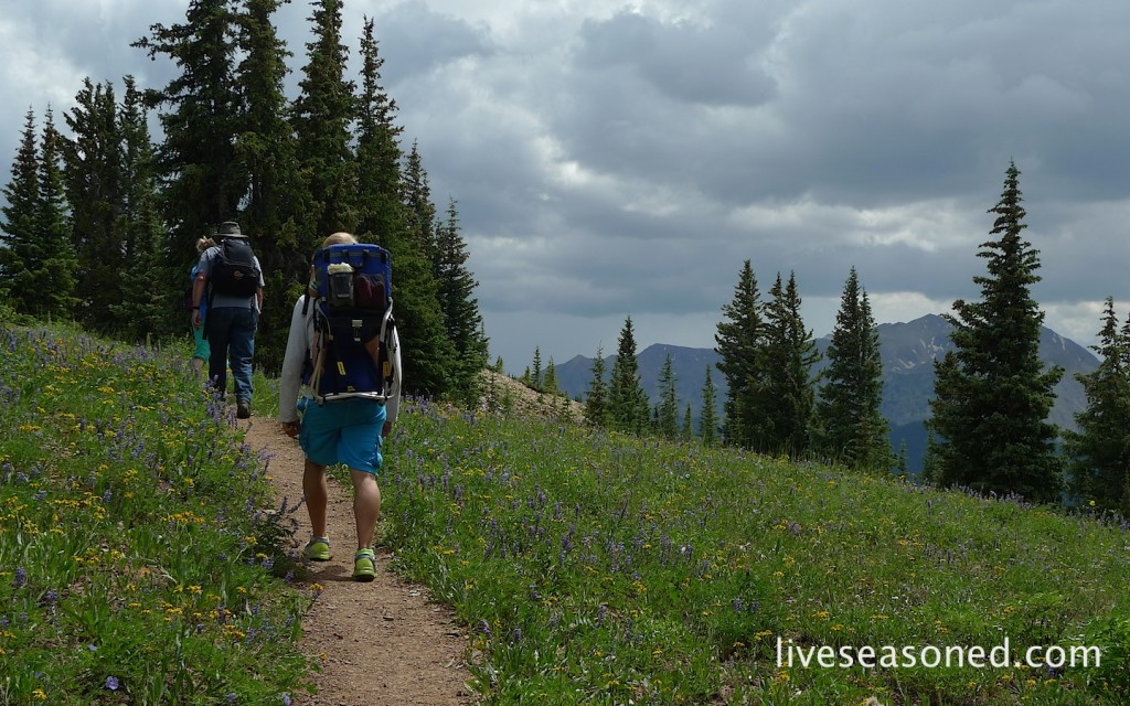 liveseasoned_summer2014_aspen6