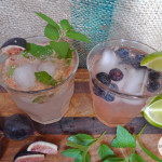 liveseasoned_summer2014_mocktails7_wm