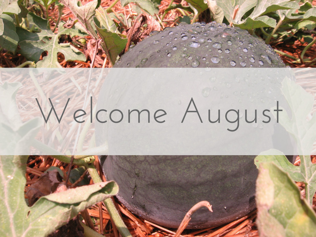 liveseasoned_summer2014_welcomeaugust_banner
