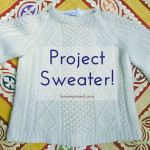 My Big Sweater Project