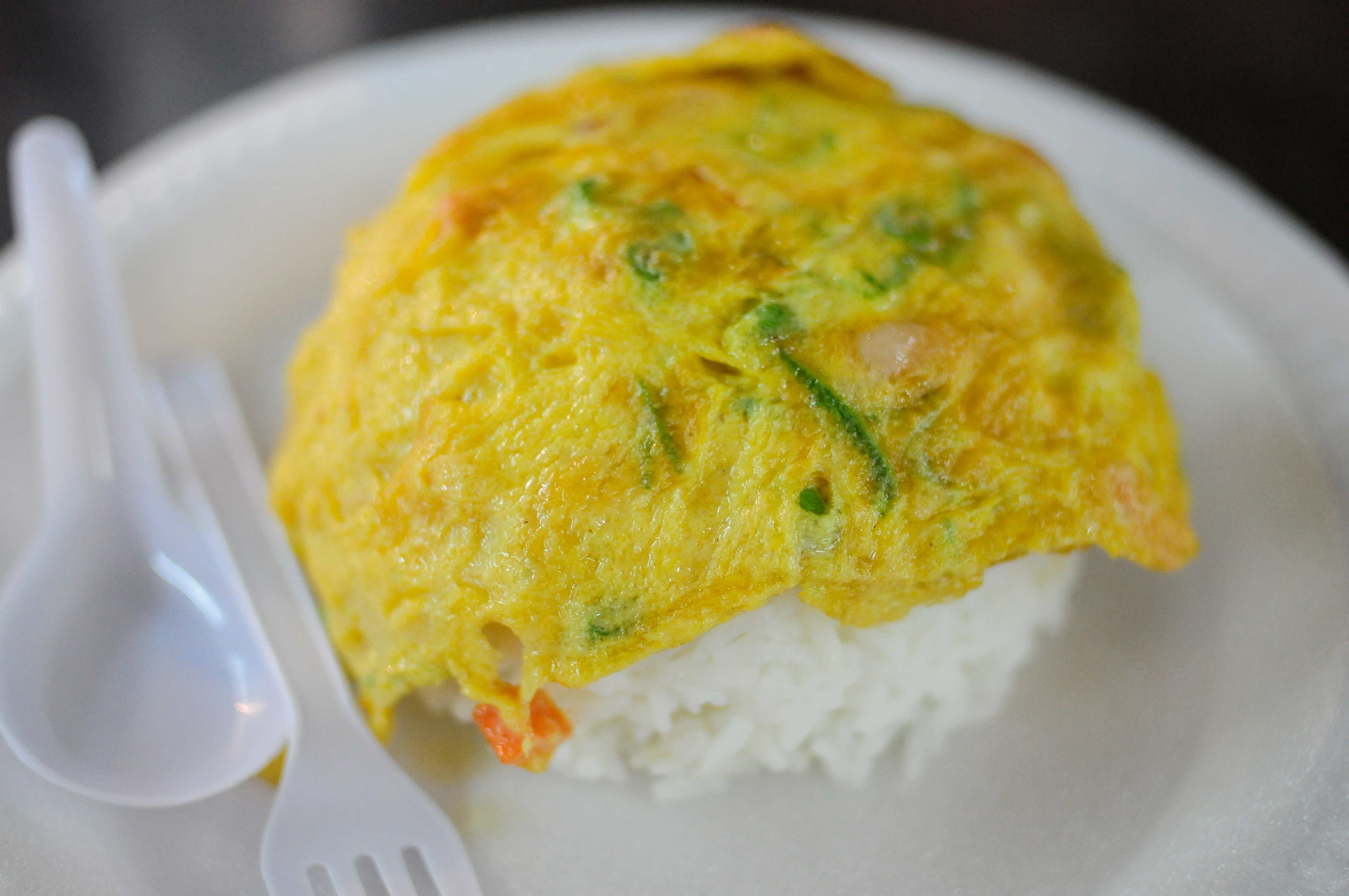 Sad Omelet
