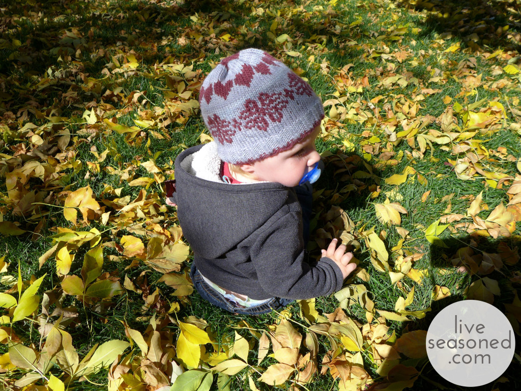 liveseasoned_fall2014_littleahat5_wm