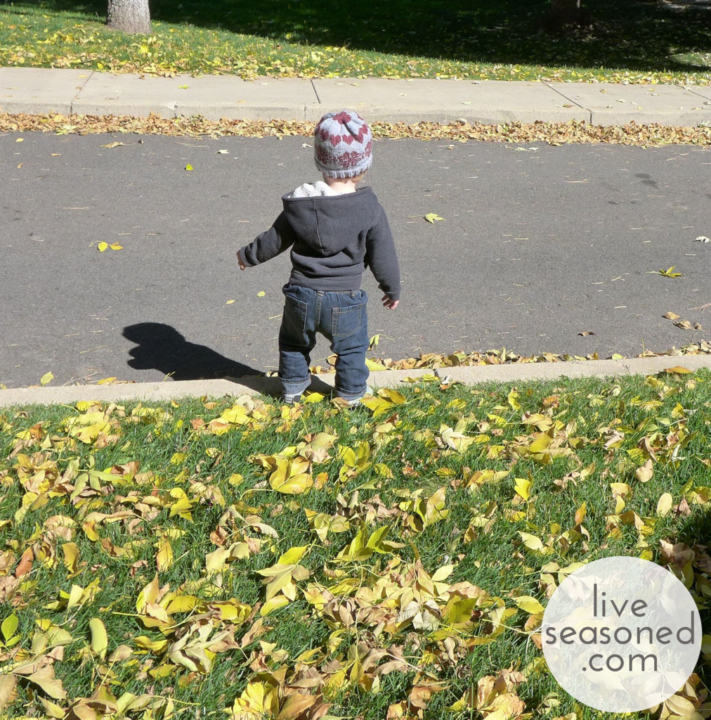 liveseasoned_fall2014_littleahat6_wm