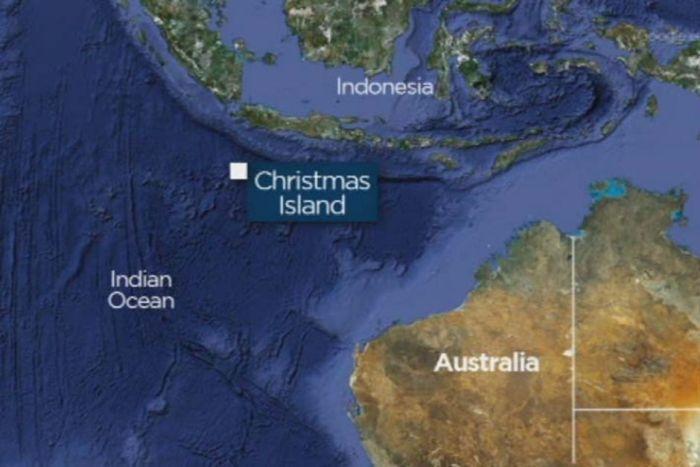 red-crab-christmas-island