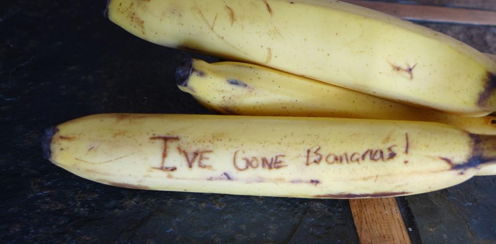 liveseasoned_w2015_bananavalentine3