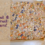 Nut & Fruit Bars