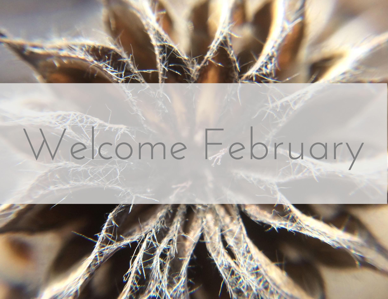 Welcome February