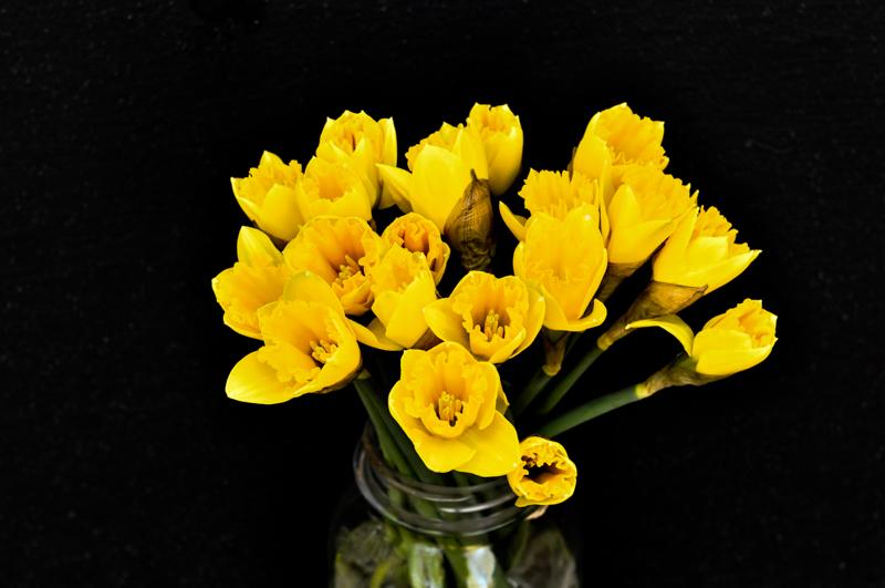liveseasoned_sp15_flowers-1