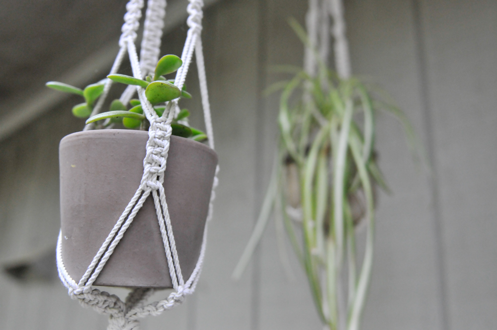 liveseasoned_sp15_plant hangers-6