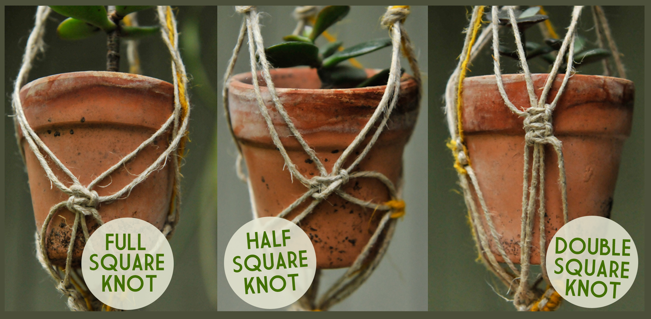 Uncategorized Macrame Patterns Plant Hanger diy macrame plant hangers liveseasoned square knots