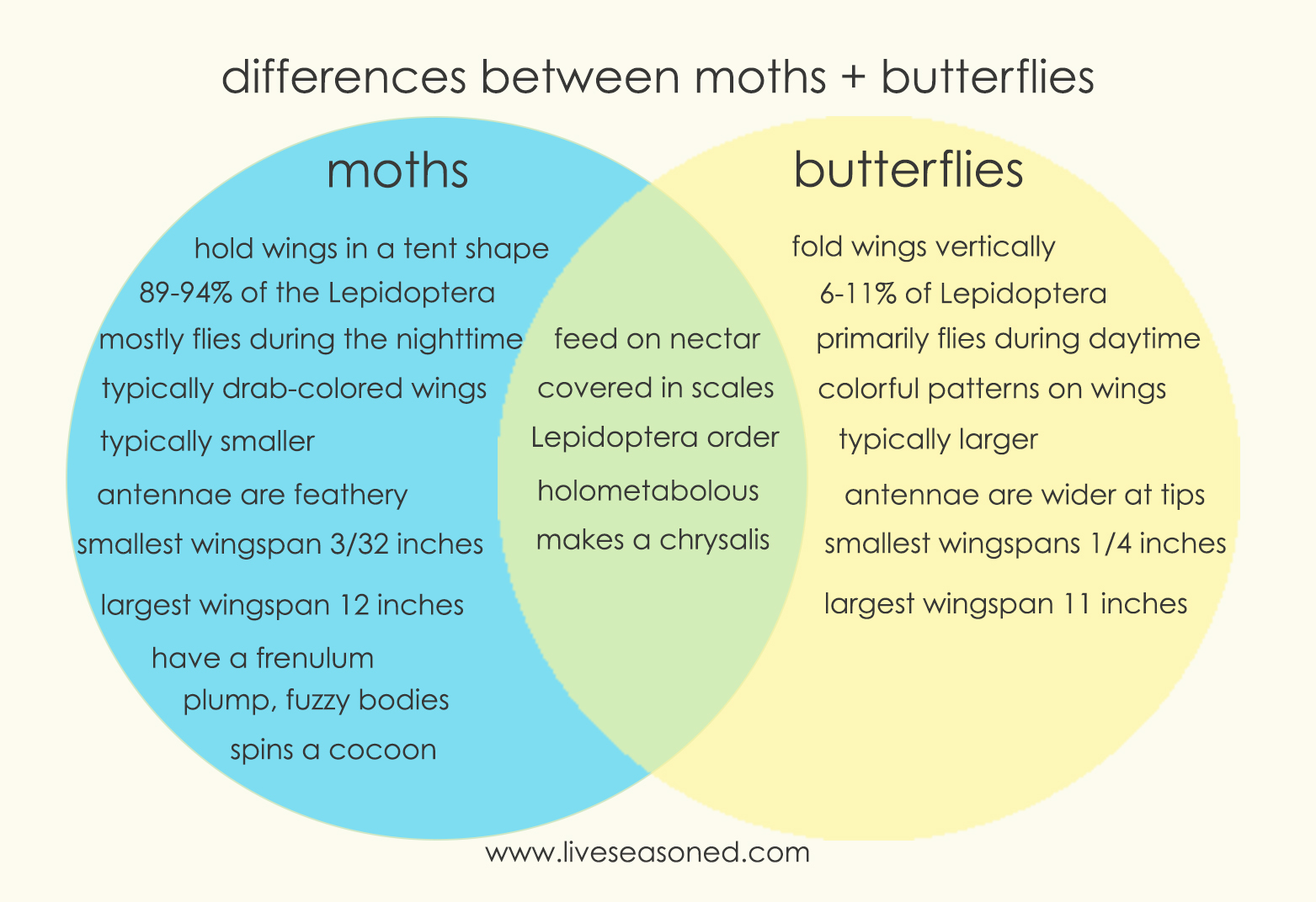 liveseasoned_moths+butterflies