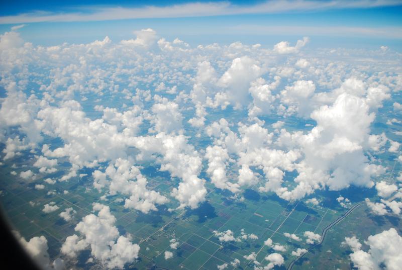 liveseasoned_summer15_flights-1