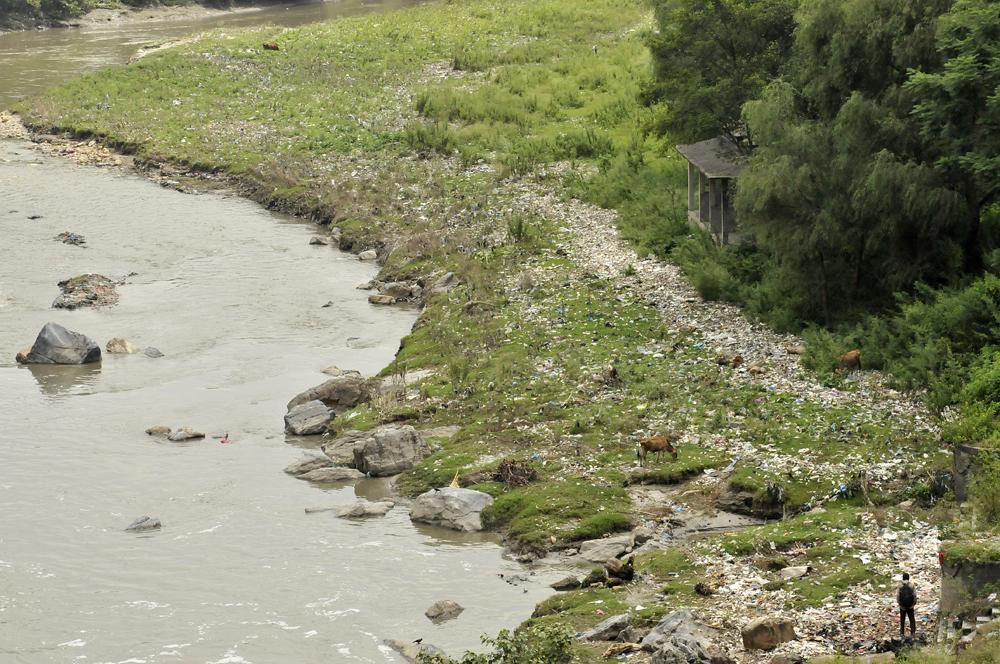 Liveseasoned fall15 rivers4