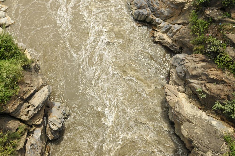 Liveseasoned fall15 rivers6