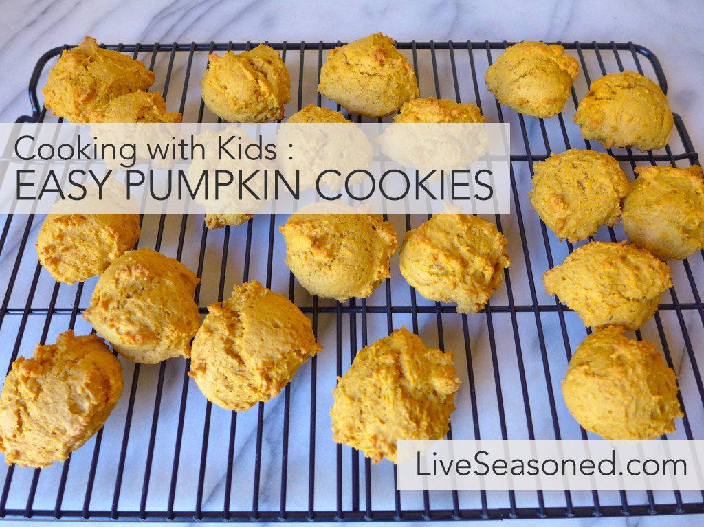 liveseasoned_fall2015_pumpkincookies7-1024x767 copy