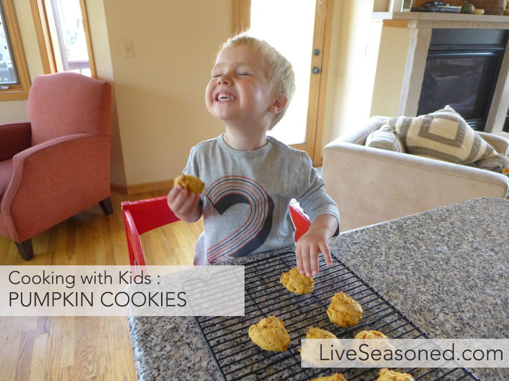 liveseasoned_fall2015_pumpkincookies9-1024x768 copy