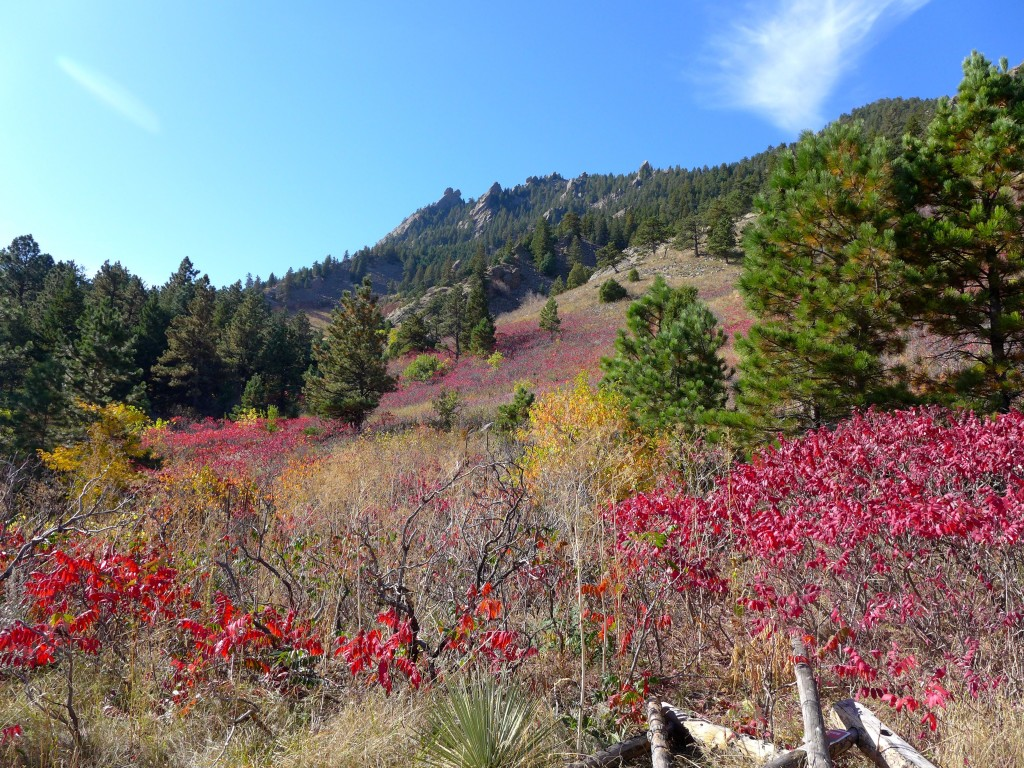 liveseasoned_fall2015_eldoradohike14