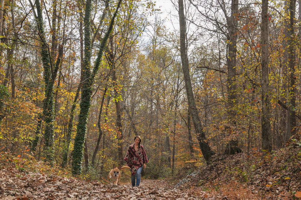 liveseasoned fall15 autumn poncho-1