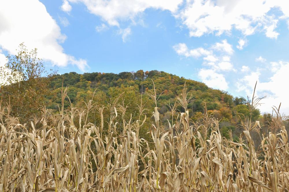 liveseasoned fall15 welcome november hiking-1-4