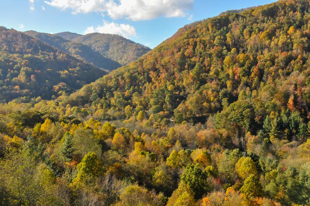 liveseasoned fall15 welcome november hiking-1-5