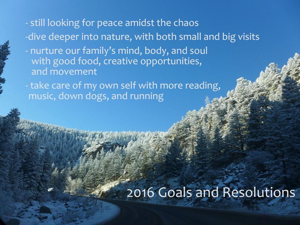 liveseasoned_w2016_resolutions