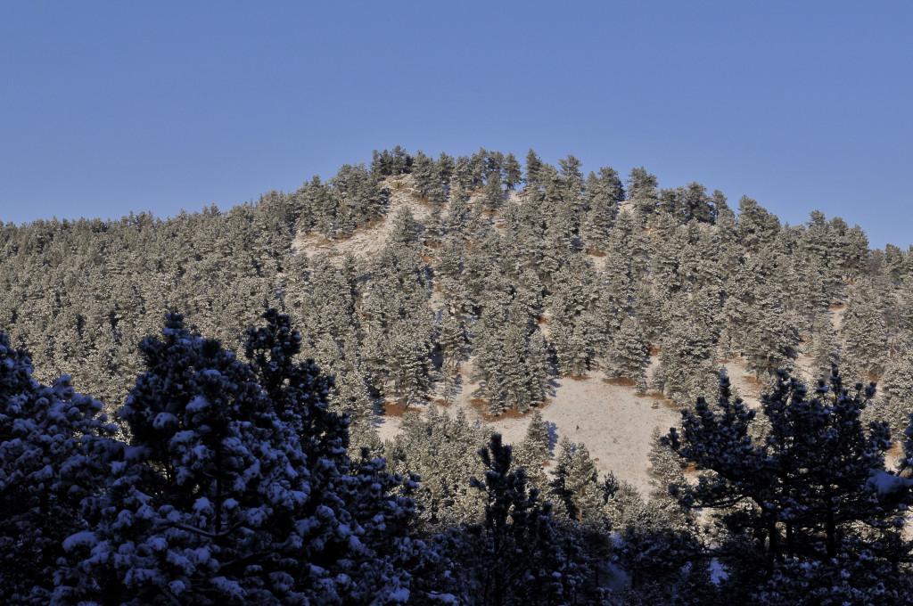 liveseasoned_winter16_seasoned view3