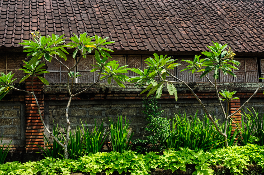 liveseasoned spring16 Travel Bali Sarah Schu photography-10