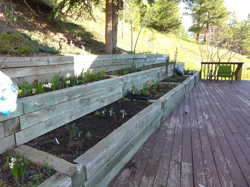 liveseasoned_spring2016_garden10