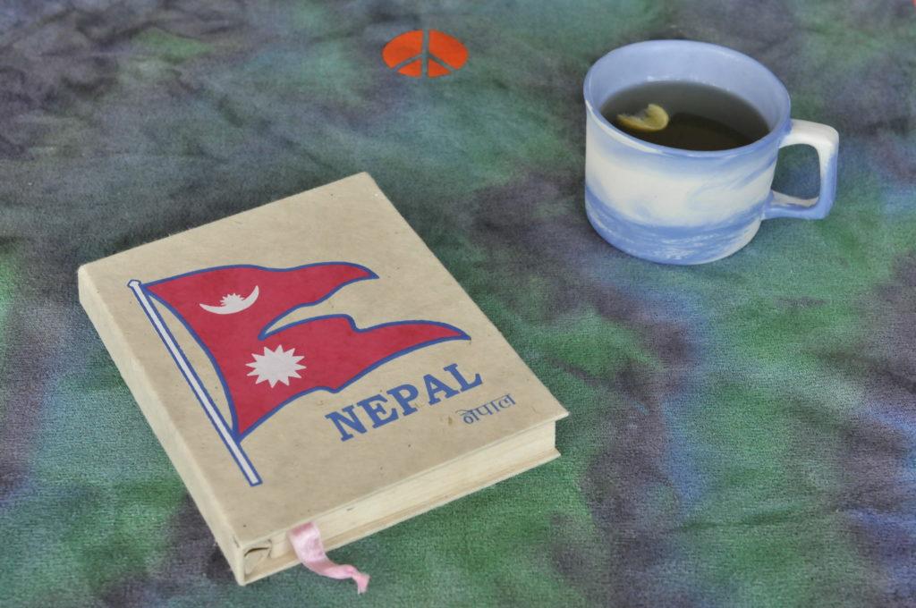 live-seasoned-nepal-rishikul-yogshala