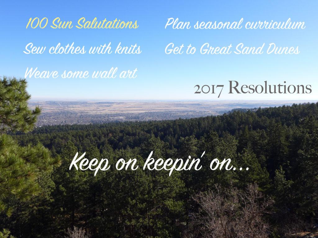 resolutions_2017b