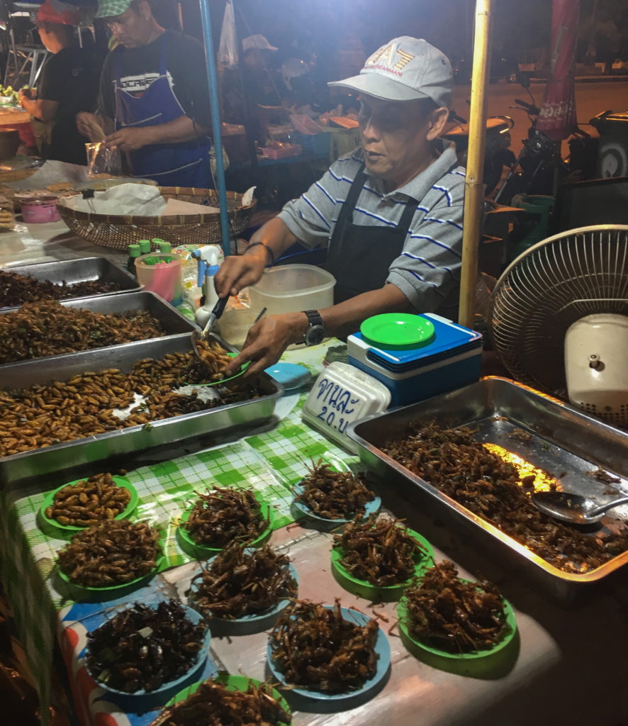 liveseasoned eat insects thailand-3-2