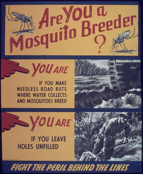 mosquito_poster