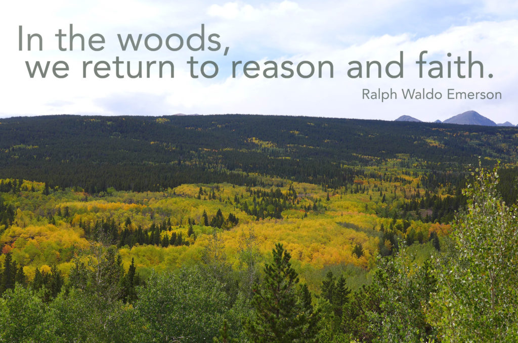 oct_hike_quote2