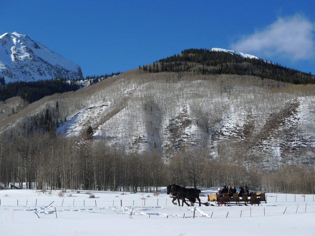 snowshoe_horses